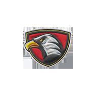 <b><font style='font-size:25px'>Команда Eagles</font></b><br>