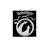 <b><font style='font-size:25px'>Волонтёр</font></b><br>