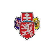 <b><font style='font-size:25px'>Чехословацкие легионы</font></b><br>