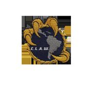 <b><font style='font-size:25px'>Copa Latina-Americana Warships Winner</font></b><br>