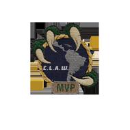 <b><font style='font-size:25px'>Copa Latina-Americana Warships MVP</font></b><br>